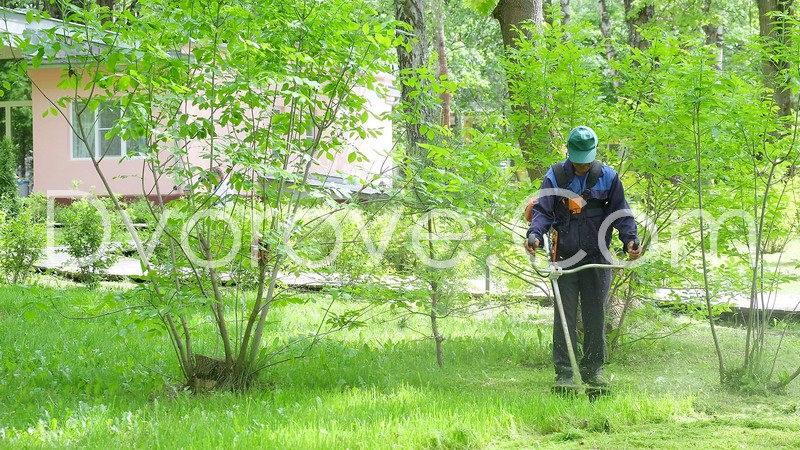 Професионално косене на трева